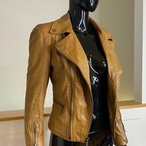 Real leather brown slim moto jacket Tara BCBG